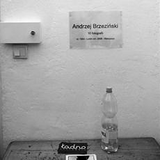 Andrzej Brzeziński - Artist - Art in House Gallery Online