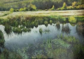 Obraz do salonu artysty Konrad Hamada pod tytułem Mokradła letnie