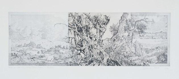 Grafika do salonu artysty Krzysztof Wieczorek pod tytułem Wędrujac przez szerokie doliny H. Seghersa