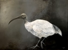 Living room painting by Klaudia Choma titled Australian white ibis