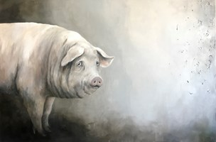 Living room painting by Klaudia Choma titled Pig