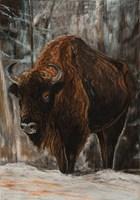 Living room painting by Agnieszka Korczak titled Bison