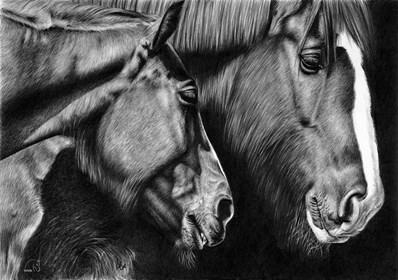 Obraz do salonu artysty Magdalena Muraszko-Kowalska pod tytułem Konie zimowe