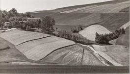 Radostowa Landscape