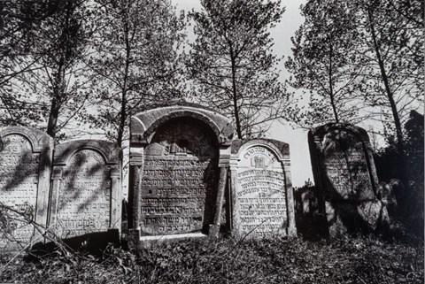 Living room  by Jan Magierski titled Jewish Cemetery in Józefowo