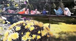 Obraz do salonu artysty Grzegorz Chojnacki pod tytułem NIEME PTASZKI
