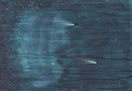 Obraz do salonu artysty Katarzyna Celek pod tytułem Kosmos