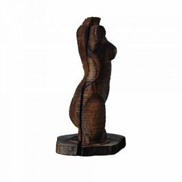 Obraz do salonu artysty Zbigniew Blajerski pod tytułem Tors drewniany nr: 3