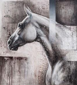 Obraz do salonu artysty Kamila Karst pod tytułem Siwy I