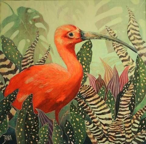 Obraz do salonu artysty Janina Zaborowska pod tytułem IBIS