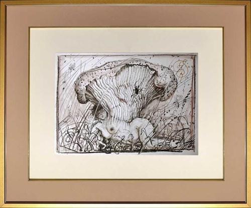 Obraz do salonu artysty Franciszek Starowieyski pod tytułem Grzyboida