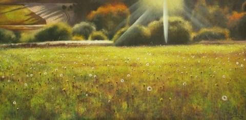 Obraz do salonu artysty Konrad Hamada pod tytułem Łąka, mlecze, dmuchawce
