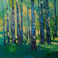 Obraz do salonu artysty Daniel Gromacki pod tytułem Lato w Puszczy. Brzozy.