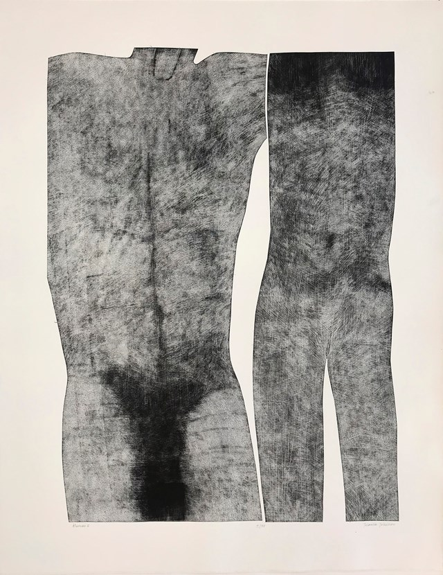 Grafika do salonu artysty Jolanta Johnsson pod tytułem Human 6
