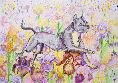 Obraz do salonu artysty Marta Horodniczy pod tytułem Radość psa