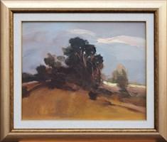 Obraz do salonu artysty Marian  Danielewicz pod tytułem Pejzaż Z Drzewami