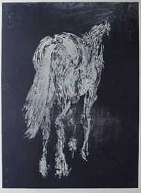 Grafika do salonu artysty Magdalena Gintowt-Juchniewicz pod tytułem equus