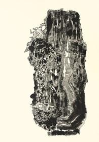 Grafika do salonu artysty Sebastian Skowronski pod tytułem Autoportret emocjonalny, praca unikatowa