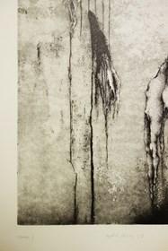 Grafika do salonu artysty Joanna Klepadło pod tytułem Herbarium II