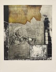 Grafika do salonu artysty Joanna Klepadło pod tytułem Środowisko rozwoju - triumfujący gracze