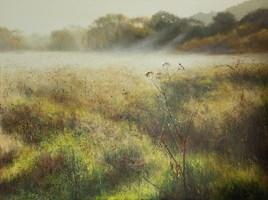 Obraz do salonu artysty Konrad Hamada pod tytułem Łąka, pajęczyny