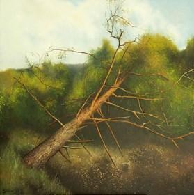 Obraz do salonu artysty Konrad Hamada pod tytułem Powalona sosna