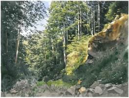 Obraz do salonu artysty Michał  Suffczyński pod tytułem Dolina Roztoki Beskidzkiej