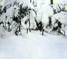 Obraz do salonu artysty Jan Dubrowin pod tytułem Bajka zimowa