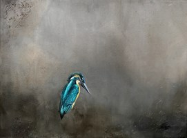 Living room painting by Klaudia Choma titled Kingfisher