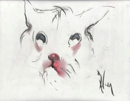 Obraz do salonu artysty Bożena Wahl pod tytułem Kotek - portret