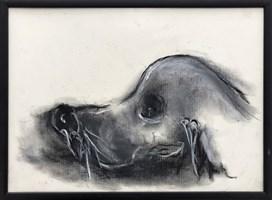 Obraz do salonu artysty Bożena Wahl pod tytułem Jamnik