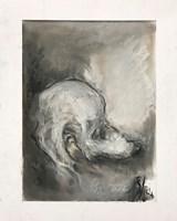 Obraz do salonu artysty Bożena Wahl pod tytułem Pudelek