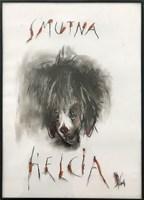 Obraz do salonu artysty Bożena Wahl pod tytułem Smutna Helcia