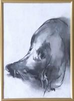 Obraz do salonu artysty Bożena Wahl pod tytułem Portret psa - z cyklu portrety zwierząt 031