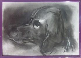 Obraz do salonu artysty Bożena Wahl pod tytułem Portret psa - z cyklu portrety zwierząt 038