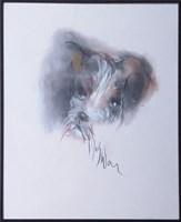 Obraz do salonu artysty Bożena Wahl pod tytułem Portret psa - z cyklu portrety zwierząt 046