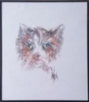 Obraz do salonu artysty Bożena Wahl pod tytułem Portret kota - z cyklu portrety zwierząt 048