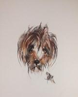 Obraz do salonu artysty Bożena Wahl pod tytułem Portret psa - z cyklu portrety zwierząt 053