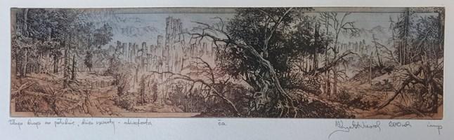 Grafika do salonu artysty Krzysztof Wieczorek pod tytułem Długa droga na południe - dzień czwarty - akwaforta