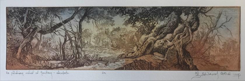 Grafika do salonu artysty Krzysztof Wieczorek pod tytułem Na południowy wschód od Gandawy - akwaforta