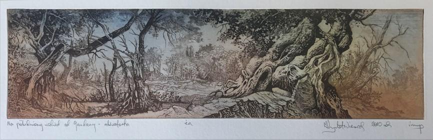Grafika do salonu artysty Krzysztof Wieczorek pod tytułem Na południowy wschód od Gandawy - akwaforta I
