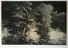 Grafika do salonu artysty Krzysztof Wieczorek pod tytułem Noc i dzień II