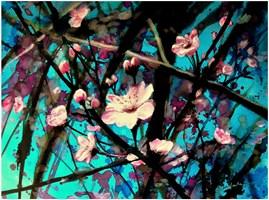 Obraz do salonu artysty Joanna Sadecka pod tytułem Rozkwitanie