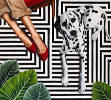 Obraz do salonu artysty Sławomir Setlak pod tytułem Karminowe pantofelki