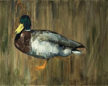 Obraz do salonu artysty Andrew John Stewart pod tytułem The Duck