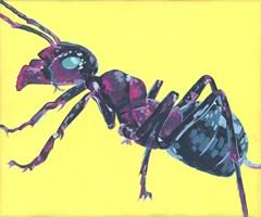 Obraz do salonu artysty Ewelina Czarniecka pod tytułem Mrówka