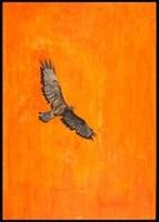 Obraz do salonu artysty Joanna Półkośnik pod tytułem W stronę słońca